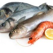 pescados-y-mariscos-600x400